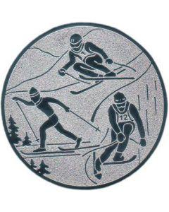 Emblem Schi-Kombination (Nr.47)