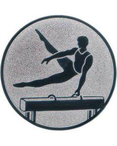 Emblem Turnen/Seitpferd (Nr.138)