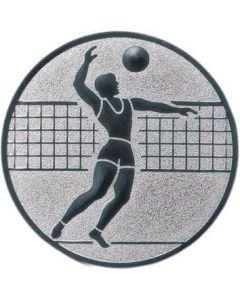 Emblem Volleyball/Herren (Nr.122)